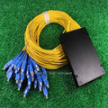 1*32 de Fibra Óptica PLC Splitter CATV pigtail, monomodo, com conector SC para FTTH, 1x32 módulo de caixa de ODN
