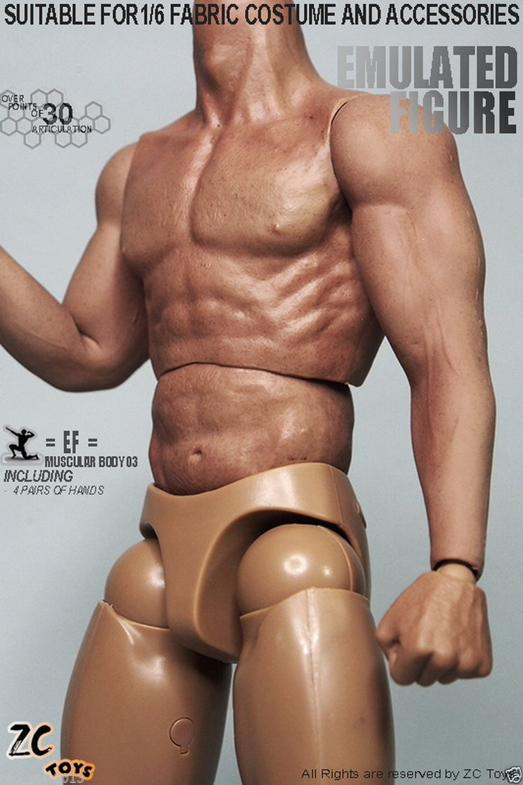 ZC Toys 1/6 Male Nude Muscular Muscular Physique Three.zero F12″ Collectible Motion Determine Just like HT Thor Physique With Seamless Arms Toys