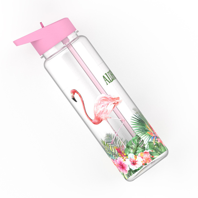 Bpa Free 750ml 100%Tritan Sports Outdoor Straw Water Bottle With Flamingos Printing My Drink Juice Handle The Unicorn Kettle 4