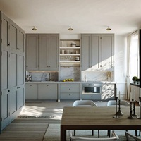 solid wood painting kitchen cabinet(LH SW088)