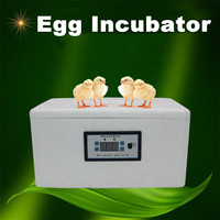 32 Eggs Automatic Family Incubator 12V 20W Digital Chicken Duck Poultry Hatcher Home Small Foam Incubation Tools Tray Brooder