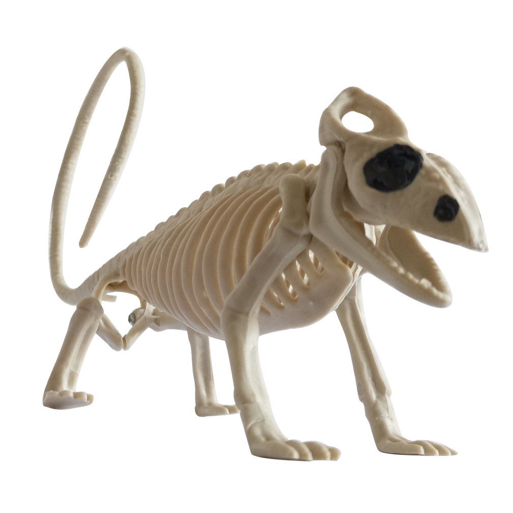HTB10NkKRxTpK1RjSZFMq6zG VXaX - Halloween Decoration Animal Skeleton Bones Creepy Spider Bat Mouse Scorpion Lizard Bones Ornaments Hallowmas Horror Props Party