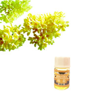 Fragrance Aromatherapy Sweet-scented osmanthus Essential Oil for Eliminate odor make scent on the body Essential Oil