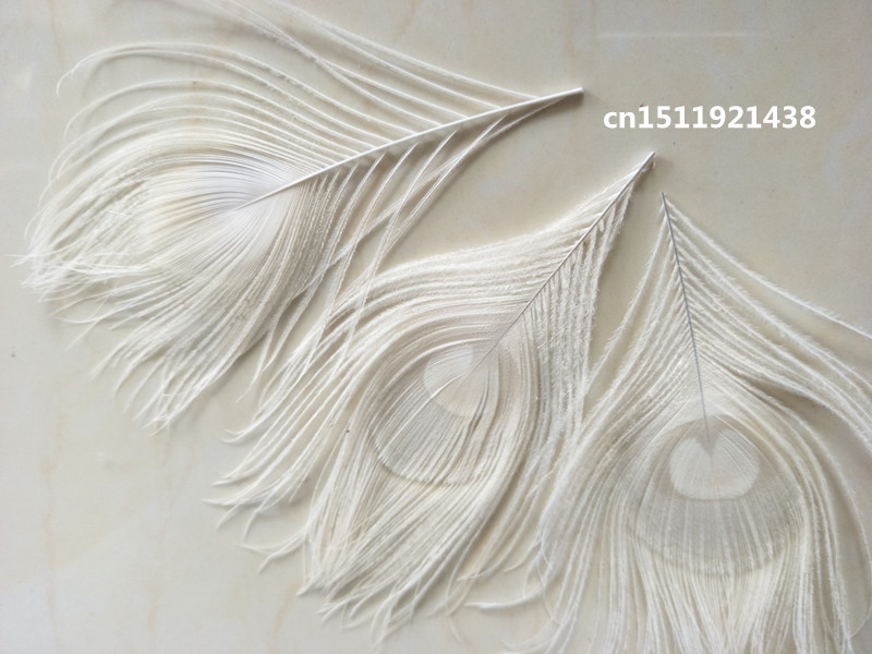 Wholesale High Quality 10pcs Rare Beige Natural  Peacock Feather 10-15cm / 4-6inch Decorative Diy Jewelry Accessories