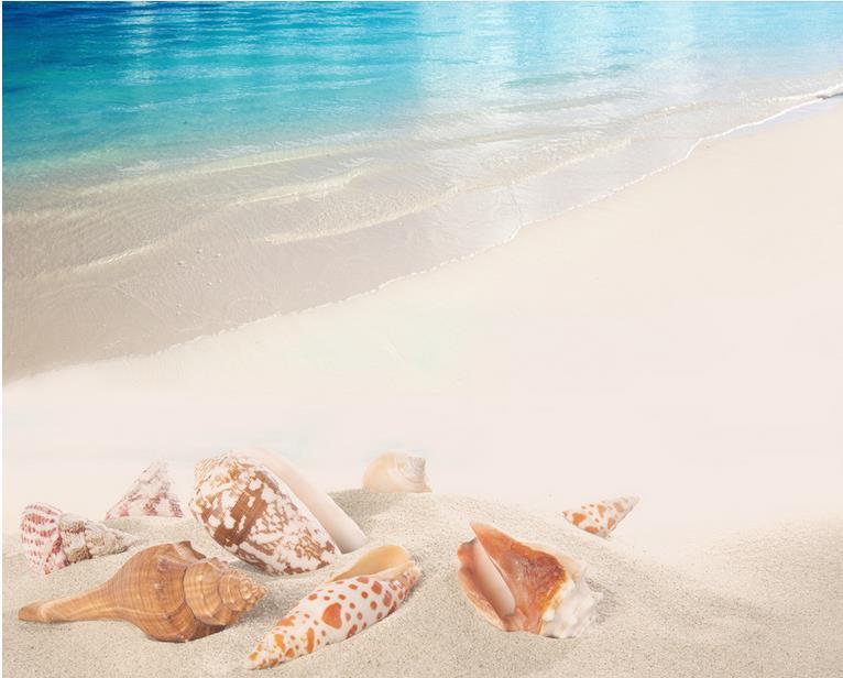3d Piano Pittura Spiaggia Mare Conchiglie E Stelle Marine Fotomurale