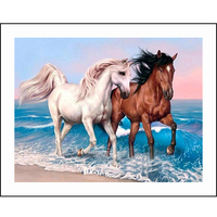 DIY Handmade Needlework Embroidery Set Cross Stitch Kit Precise Printed Sea two horses Design Cross Stitching Home Decoration