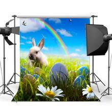 Photography Backdrops Easter Theme Eggs Rabbit Flowers Green Grass Field Rainbow Scene
