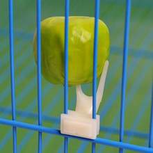 Birds Parrots Fruit Fork Pet Supplies Plastic Food Holder Feeding On Cage Pet Supplies 23(China)