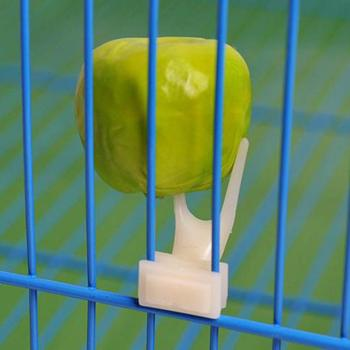 Birds Parrots Fruit Fork Pet Supplies Plastic Food Holder Feeding On Cage Pet Supplies 23