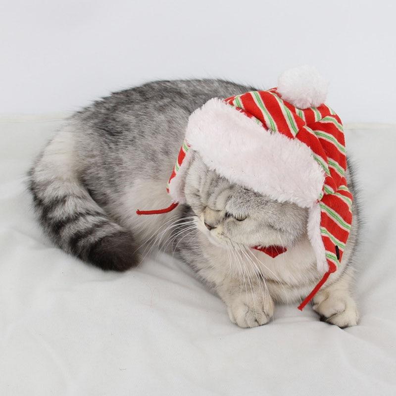 Detalle Comentarios Preguntas sobre Invierno gusano mullido ajustable  comprobado raya Navidad gorra mascota gato madre perro cachorro mascota  sombrero con ... f2e988259bc
