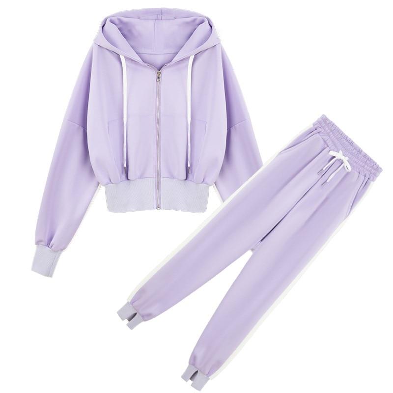 Women Causal Sport Set Female Leisure Suit Hooded Jacket Hoodies Pants Purple Pink Black
