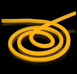 Image 5 - 1 10m açık ve kapalı LED aydınlatma esnek LED Neon işık SMD 2835 120 leds/M LED şerit halat ışık su geçirmez IP68 DC12V adaptörü ile