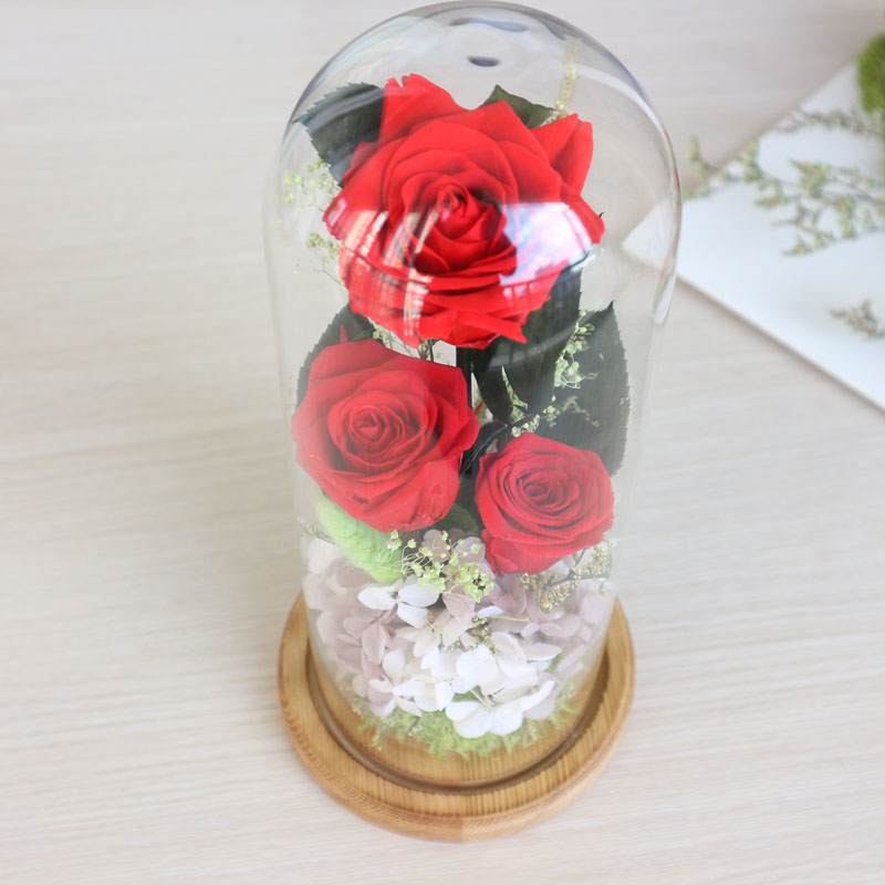 The Glass Cover Preserved Rose Flower Immortal Red Roses for Valentine Mother's Day Home Decoration Romantic