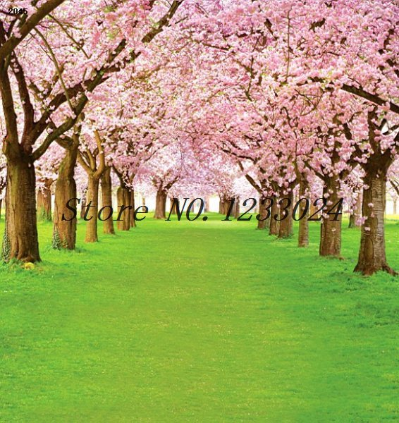 250cmx450cm grass road tree background flowers props p0hotography backdrops