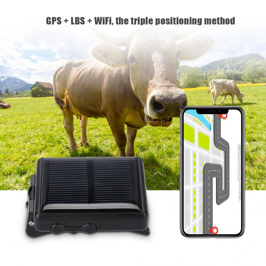 Mini Portable Animal Pet GSM GPRS GPS Locator Waterproof Solar Power  Anti-lost For Cow
