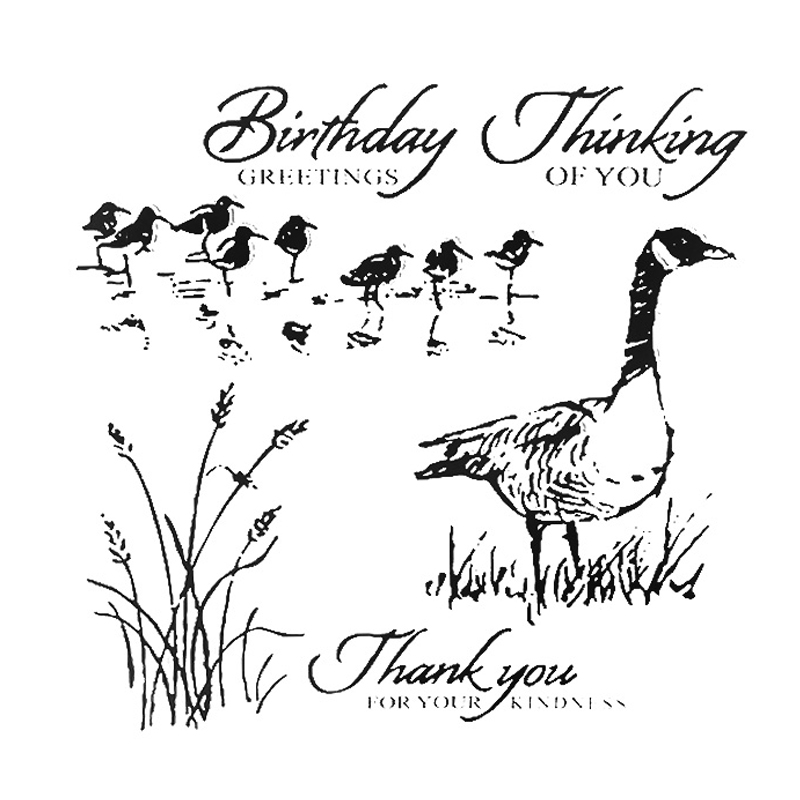 Födelsedag hälsningar Duck Transparent Clear Frimärken Silikon - Konst, hantverk och sömnad - Foto 1