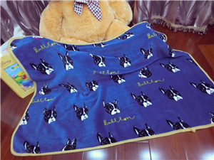 High Quality! Kids Coral Fleece Super Soft Dogs Blankets 72x100cm For Beds Thick Warm Kids Fleece Throw