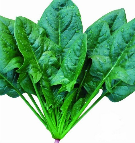 Aliexpress.com : Buy Vegetable Seeds large leaf spinach seed ...
