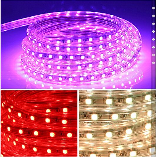 Free Shipping Led Light Color Remote Control Waterproof Outdoor Living Room Lights Flashing Neon A Lamp
