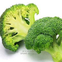 Marseed Non Hybrid 100 Broccoli Vegetable Seeds Backyard Garden