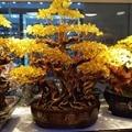 1pc 580mm height DIY natural yellow quartz crystal golden money tree bonsai feng shui home decoration scenery cash cow tree
