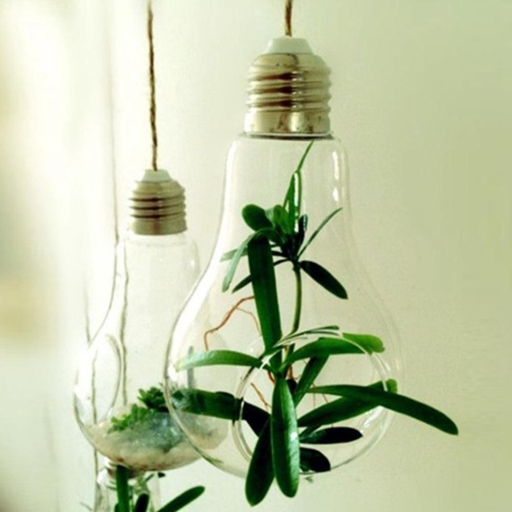 Lamp Plant Us 1 89 New Glass Bulb Lamp Shape Flower Water Plant Hanging Vase Container Home Indoor Office Wedding Decor Free Shipping In Vases From Home