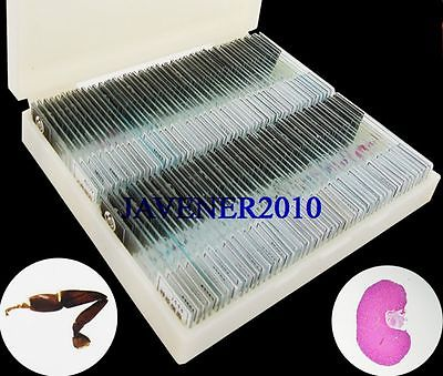 200Pcs Professional Glass Biological Microscope Prepared Slides Lab Specimens