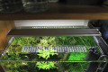 Chihiros A seriese LED light for the plant tank 90cm lengthA801. A-901.A1201 model