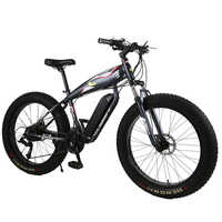 custom 26inch electric snow Beach bicycle 48V 1000w-1500w powerful motor Fat tires off-road electric mountain ebike