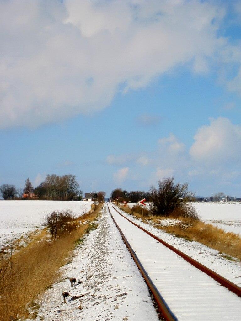 5x7ft Vinyl Custom Railway Theme Photography Backdrops Prop Photo Studio Background NTG-353