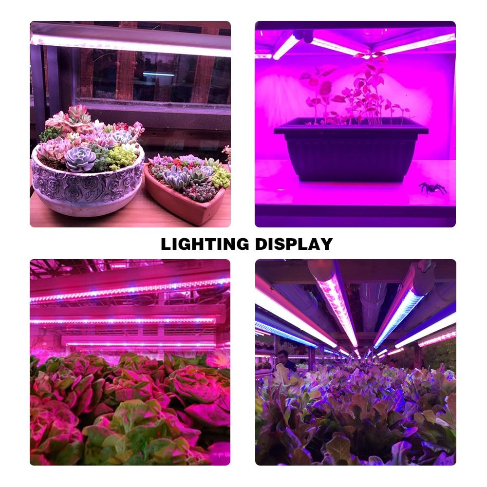 RAYWAY LED T5 Tube SMD2835 Фитолампа с висока - Професионално осветление - Снимка 6