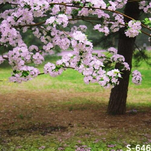 10x10ft light pink flowers blossom tree green grass park spring 10x10ft light pink flowers blossom tree green grass park spring custom photography backdrop studio backgrounds vinyl mightylinksfo