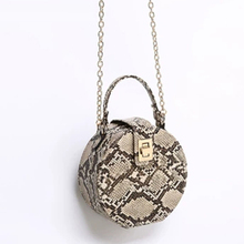 Retro Serpentine Chain Round Bag Women Handbags Printed Small PU Leather Shoulder Crossbody Bags Female Messenger