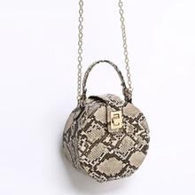 Retro Serpentine Chain Round Bag Women Handbags Printed Smal