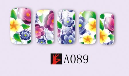 A089(1)