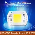 LED COB Chip Light Lamp Smart iC 20W 30W 50W 110V 230V LED lamp Warm White Cold White LED For Flood Light IP65 DIY