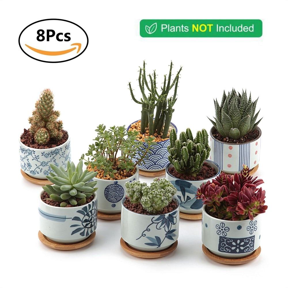 T4u Ceramic Japanese Style Serial Succulent Planter Plant Pot