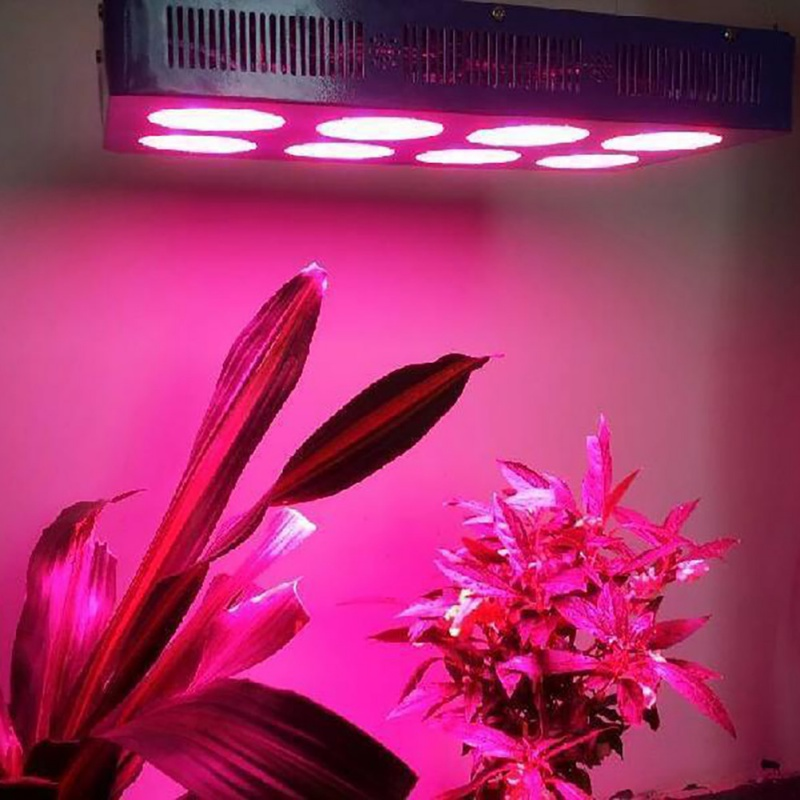 High Power LED Chip Full Spectrum Grow Light Lamp 20W 10W 30W 50W 100W 380nm - 840nm <font><b>COB</b></font> Beads for Indoor Plant Growth 2018 image