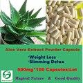Limpieza de Colon Con Extracto de Aloe Vera En Polvo TAPAS de Probióticos de Pérdida de Peso de Desintoxicación de Adelgazamiento 500 mg 100 CAPS
