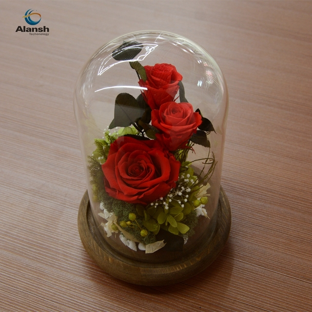 DIY Decoration Mothers Day Gifts The Preserved Flowers Immortal Colorful Roses Little Prince Glass Cover