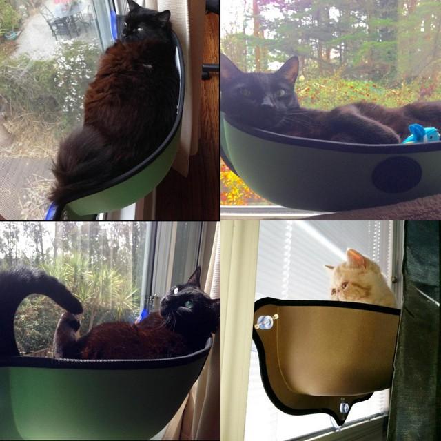 new mount window bed kitty sill cat window bed cat lounger bed hammock sofa mat 2 new mount window bed kitty sill cat window bed cat lounger bed      rh   aliexpress
