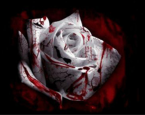 Promotion!!! 100 Seeds / Pack, The Rarest White Blood Rose Plant Flower True Seeds, Light Fragrant Garden Flower