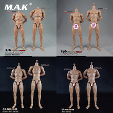 BD001/BD002/BD003/BD004/BD009/BD010 1/6 erkek standart kas vücut dar omuz 2.0 erkek 27cm/25cm modeli için 12 figürü