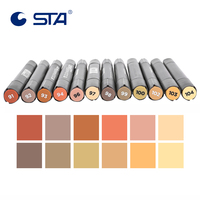 STA 12 Colors Wood Color Set Alcohol Art Marker Pens Dual Tips For Interior Wooden Furniture