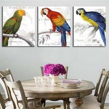 Grosir Parrot Bird Picture Gallery Buy Low Price Parrot Bird