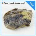 50 шт. круглый akoya перл в ойстер вакуумной упаковке 6-7 мм, лучший валентина подарок