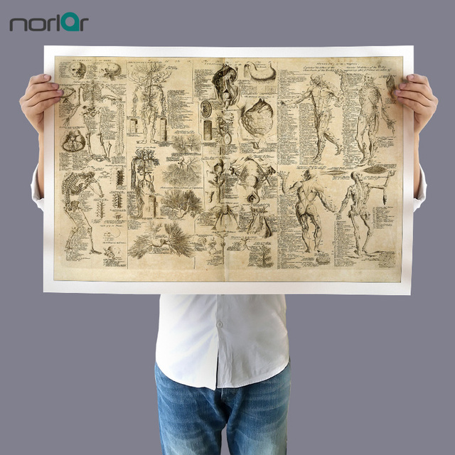 Wall Art Picture Canvas Painting Da Vinci Anatomy Drawings Retro