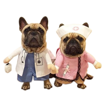 Doctor And Nurse Funny Dogs Costume