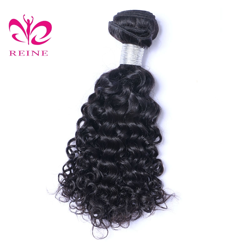 Water Wave REINE hair 100% Malaysia Human Hair Extension Weave Natural Color non Remy Free Shipping