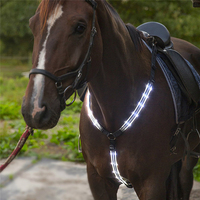 Halters Bridle Breastplate Collar High Quality USB Rechargeable LED Horse Harness Night Visible Riding Equestrian A